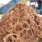 江门废紫铜黄铜回收 行情报价中心 废品回收
