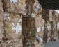 废纸回收厂家 贵州免费上门 服务周到